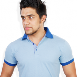 Light Blue Semi- Formal T Shirts at Rs 430  piece(s)  67ab4d1fb