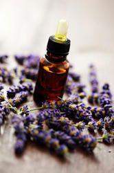 Kashmiri Lavender Essential Oil