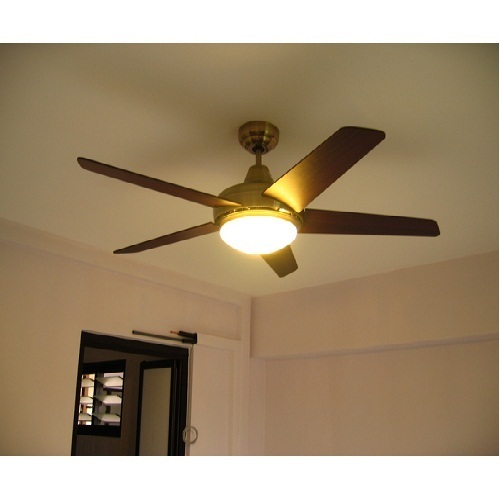 Decorative ceiling fan ashoka electric company wholesaler in decorative ceiling fan aloadofball Gallery
