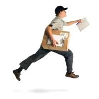 Domestic Courier Service