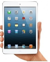 Apple 16GB iPad Mini with Wi-Fi and Cellular (White and Sil
