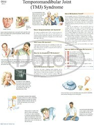 ENT (Otorhinolaryngology ) Charts