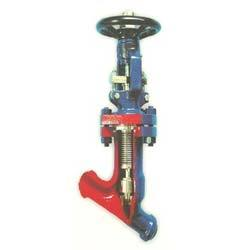 Microfinish Y Type Bellows Sealed Globe Valve