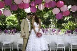 Theme Wedding Services