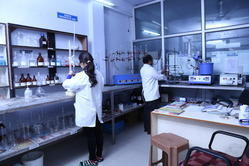 Cereals & Pulses Testing Services