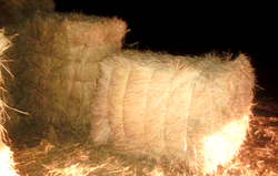 Turquoise Rice Straw Bales, 4feet By 3 Feet By 2 Feet, Pack Size: 51*39*27