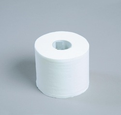 Plain Toilet Paper Roll 600 Sheet