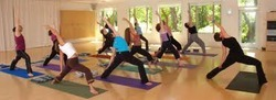 Yoga Therapy for Psycological Disorders
