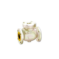 Swing Type Non Return Valve