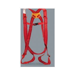 Protection Harness With Single Lanyard