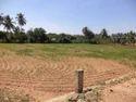 Puchinayakan Palayan, Tirupur