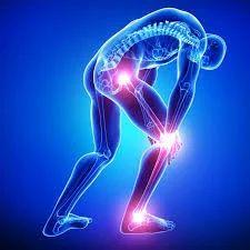 Orthopedic Treatment Service