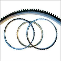 Starter Flywheel Ring Gear