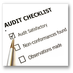 Operations & Efficiency Audit Services