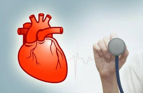 Cardiac Wellness Clinic, | Value Life Multispecialty in