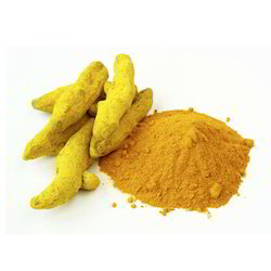 Turmeric Powder And Fingers