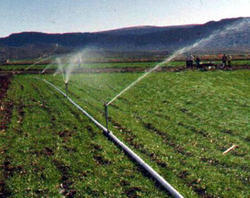 HDPE Sprinklers Irrigation System