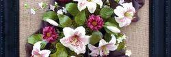 Framed Floral Arrangements