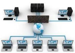 Networking Services