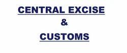 Excise & Customs Duty Return E Filing Service