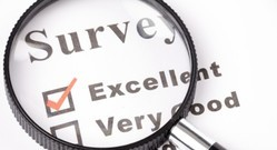 Survey and Audit