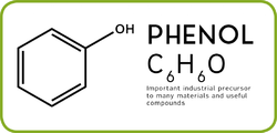 Phenol Chemical Compound