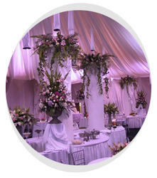 Wedding Receptions Catering Service