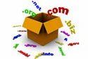 Domain Booking & Web Hosting