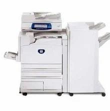 Bulk Xerox Photocopy Service