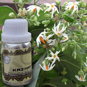 KAZIMA Natural Har Sringar Attar