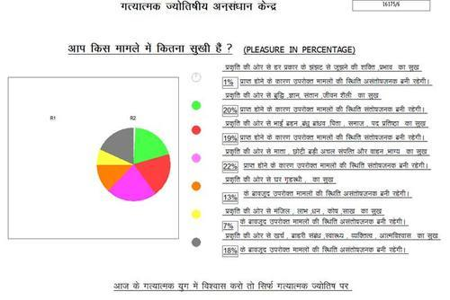 Computerized Pie Chart Making Jyotish Services In G M Colony