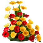 Rise and Shine Flowers Baskets