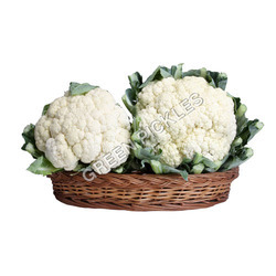 Fresh Cauliflower, Packaging: Carton