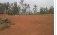 Land in Calicut