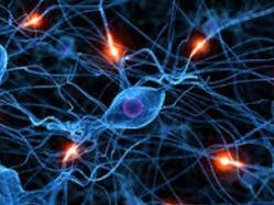 Neurology Treatment