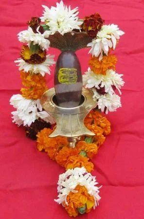 Divine Narmadeshwar Shivlinga, Yantra | Delhi | Lal Kitab
