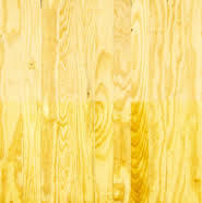 Yellow Wood Paint