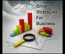 Business Growth Strategy