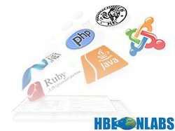 Web Based Software and Application Development
