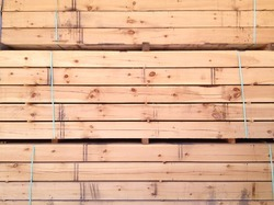 Pinewood Manufacturers Suppliers Amp Exporters Of Pinewoods