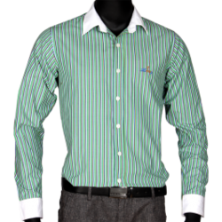Mens Wear - Green Striped Shirt Manufacturer from New Delhi