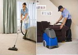 Carpet and Upholstery Shampooing Services