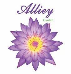 Alliey Garden Infrastructure Project
