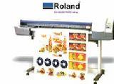 Roland ECO Solvent Printer 1440 Dpi
