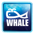 Whale Enterprise Private Limited