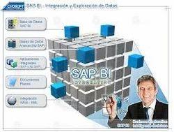 SAP Business intelligence Service