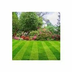 Garden Treatment Service