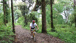 Cycling Package Tours