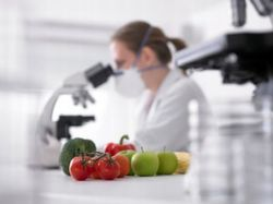 Food Testing Services - Food Testing Service Service Provider from ...
