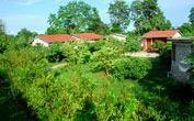 Jaagar Village Resort